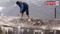 Un homme sauve un chien de la noyade, mais c'est ce que fait le chien après qui fait chaud au cœur!