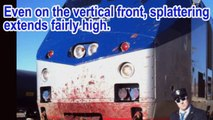The Nice Truck Attack Was COMPLETELY FAKE - Spotless Truck, Fake Bodies, Fake Terror