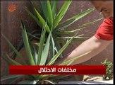 فلسطين: عشرات الضحايا بسبب القنابل والقذائف التي ...