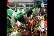 Photos Fête des fleurs de Fort-Mahon 2016