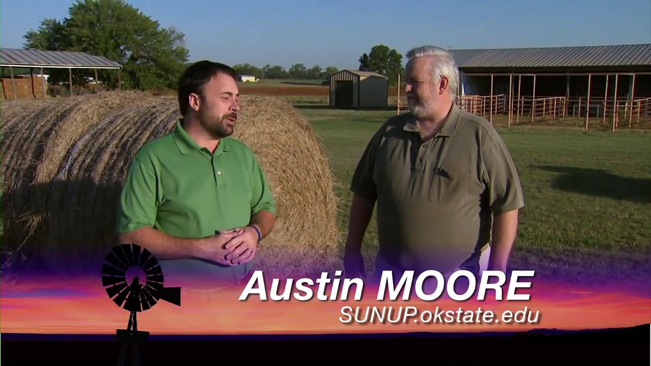 Livestock Marketing (9/15/12)