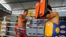 Muay Thai University: Professional World Class Muay Thai Training Online 24/7