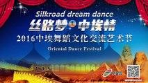 Nour Oriental Dance Solo at Beijing Oriental Dance Gala Show 2016