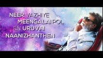 New Tamil Movie Kabali || Maya Nadhi Song with Lyrics || Rajinikanth || Pa Ranjith || Santhosh Narayanan