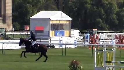 Dora - CSI Amateur 115 Chantilly 24/04/15