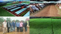 Pipeline Irrigation Project in Cambodia