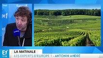 La Cour des comptes épingle la France sur le problème de l'alcool et ce que vaut réellement Zlatan sur le terrain : les experts d'Europe 1 vous informent