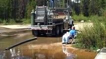 Lâcher de centaines de poissons dans un lac aux Etats Unis