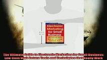 READ book  The Ultimate Guide to Electronic Marketing for Small Business LowCostHigh Return Tools  FREE BOOOK ONLINE
