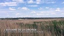 2016-05-06 16.13.00 l'estuaire de la gironde à Mortagne sur Gironde