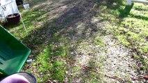 Video Blog - 12-19-2009 - My Big Orange Tractor lol
