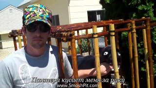 Most Epic Vacation Ever Ian is Bored 27 russian su
