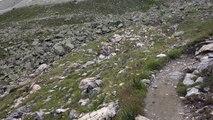 between Col de Riedmatten and Arolla, Valais, Suisse, 27-07-2014