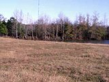 25 acres of beautiful rolling pastures w pond in Sparta, Ga