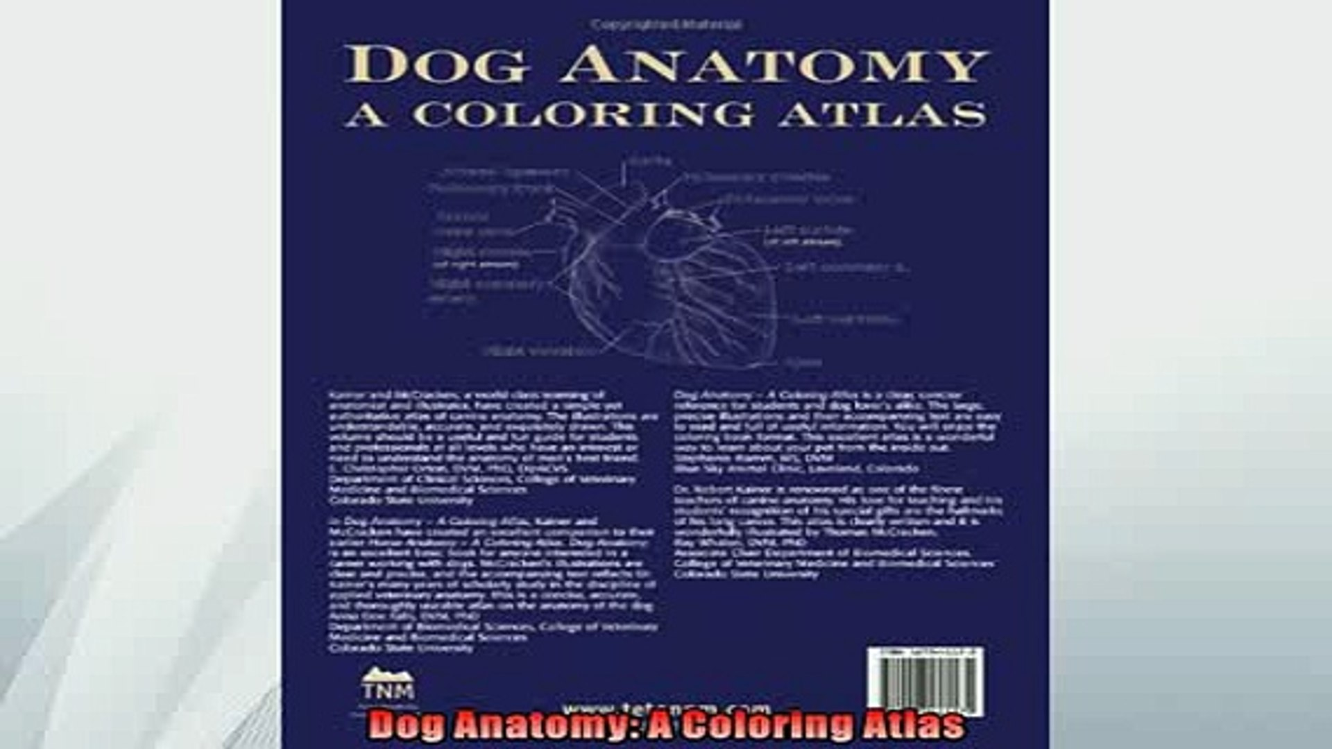FREE PDF Dog Anatomy A Coloring Atlas READ ONLINE