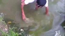 Electrocuté en tentant de pêcher une Anguille Electrique