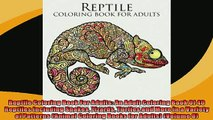 EBOOK ONLINE  Reptile Coloring Book For Adults An Adult Coloring Book Of 40 Reptiles Including Snakes  BOOK ONLINE