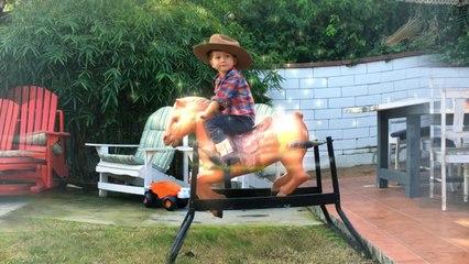 Little Boy Breaks Through Fence On Magic Horse | Van The Man | FXated