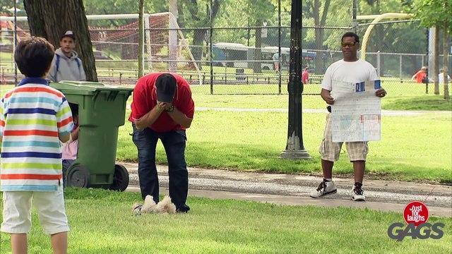 Man Mistakes Dog for Baseball !