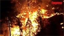 États-Unis: impressionnants feux de forêt dans le sud-ouest du pays