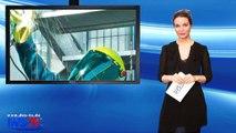 DVS-TV Nachrichten 10 (03.03.2015)