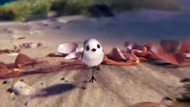 Découvrez l'oiseau Piper, le nouveau petit héros de Pixar