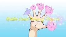 PEPPA PIG LOLLIPOPS - Finger Family Daddy Finger Nursery Rhymes Peppa Pig Finger Family Songs