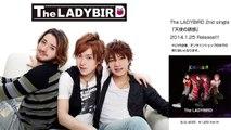 The LADYBIRD 2ndシングル 「天使の誘惑」2014/01/25リリース!
