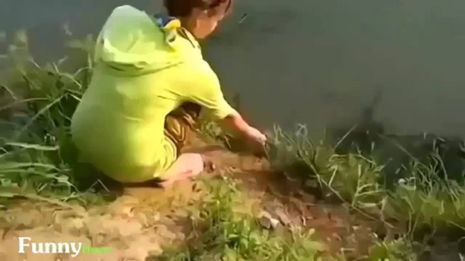 Funny Videos Funny Pranks Funny Girls Funny Animals Fails