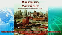 behold  Brewed in Detroit Breweries and Beers Since 1830 Great Lakes Books Series