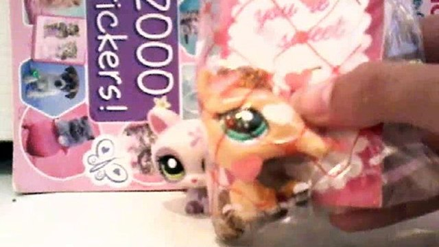 My lps my friend got me from school!