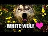 Far Cry Primal   Taming Beasts (White WOLF) - Beast Gameplay