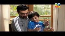 Mann Mayal Episode 22 HD Full Hum TV Drama 20 June 2016 - Pakistani Dramas Online in HD