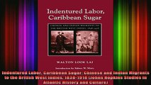 READ book  Indentured Labor Caribbean Sugar Chinese and Indian Migrants to the British West Indies Full EBook