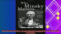 behold  Why Minsky Matters An Introduction to the Work of a Maverick Economist