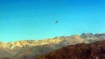 Vuelo del Condor part4-Tour Arequipa Nov 2010 (24 de 31)