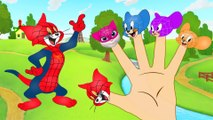 Tom and Jerry Spiderman Finger Family Song - Tom and Jerry Cartoon  3D Animation - English Nursery rhymes - 3d Rhymes - Kids Rhymes - Rhymes for childrens