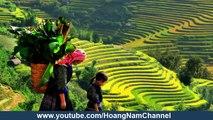 tour sapa | du lịch sapa | Sapa Vietnam tours - 1tour.vn