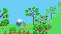 Videos De Peppa Pig Capitulos Completos En Español Peppa Pig Para Niños   TEMPORADA 1 CAPÍTULO 1