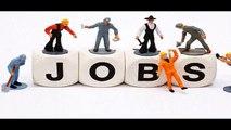 Top Job Consultants in Delhi, Noida and NCR