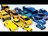 Yellow Blue Color Transformers Carbot Tobot  Robot Car Toys 노란색 파란색 헬로카봇 또봇  트랜스포머 자동차 장난감 변신 동영상