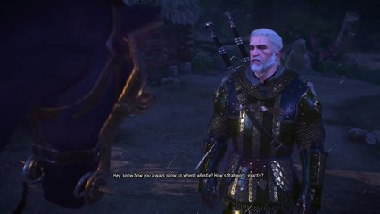 The Witcher 3: Wild Hunt - Talking to Roach