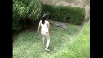 Girl Enters Crocodile Enclosure At Zoo - Woman climbs into Mexican zoo enclosure, pokes crocodile