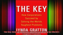 READ book  The Key How Corporations Succeed by Solving the Worlds Toughest Problems Full Free