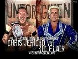 Chris Jericho vs Ric Flair, WWE Unforgiven 2002
