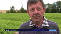 RECONVERSION VERS L' AGRICULTURE DURABLE : EXEMPLES FRANCAIS (J T  France 3 2016 )