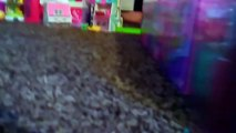 Unboxing trying to anyways ever after Thomas Shopkins kids toys