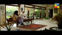 Sawaab Episode 18 Full HD HUM TV Drama 24 June 2016