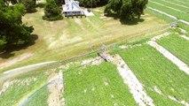 Center Pivot Irrigation Machine Watering Watermelon Crop - Valley Irrigation