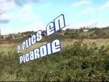 miami vice 2 flics en Picardie Picardie vice